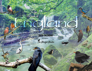 The Birds of England: 2020 Calendar