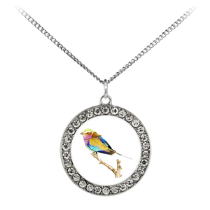 Lilac-breasted Roller Necklace Stone Coin