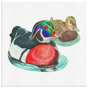Wood Duck Canvas Wrap
