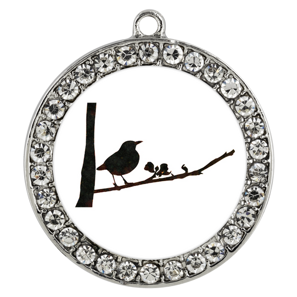 Black Bird Necklace Stone Coin