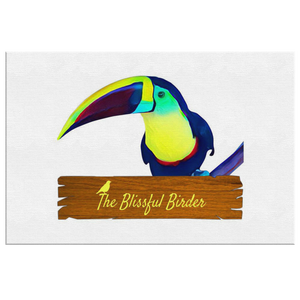 Toucan Canvas Wrap