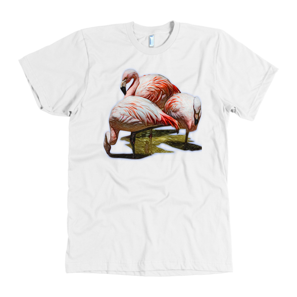 Flamingo American Apparel Mens