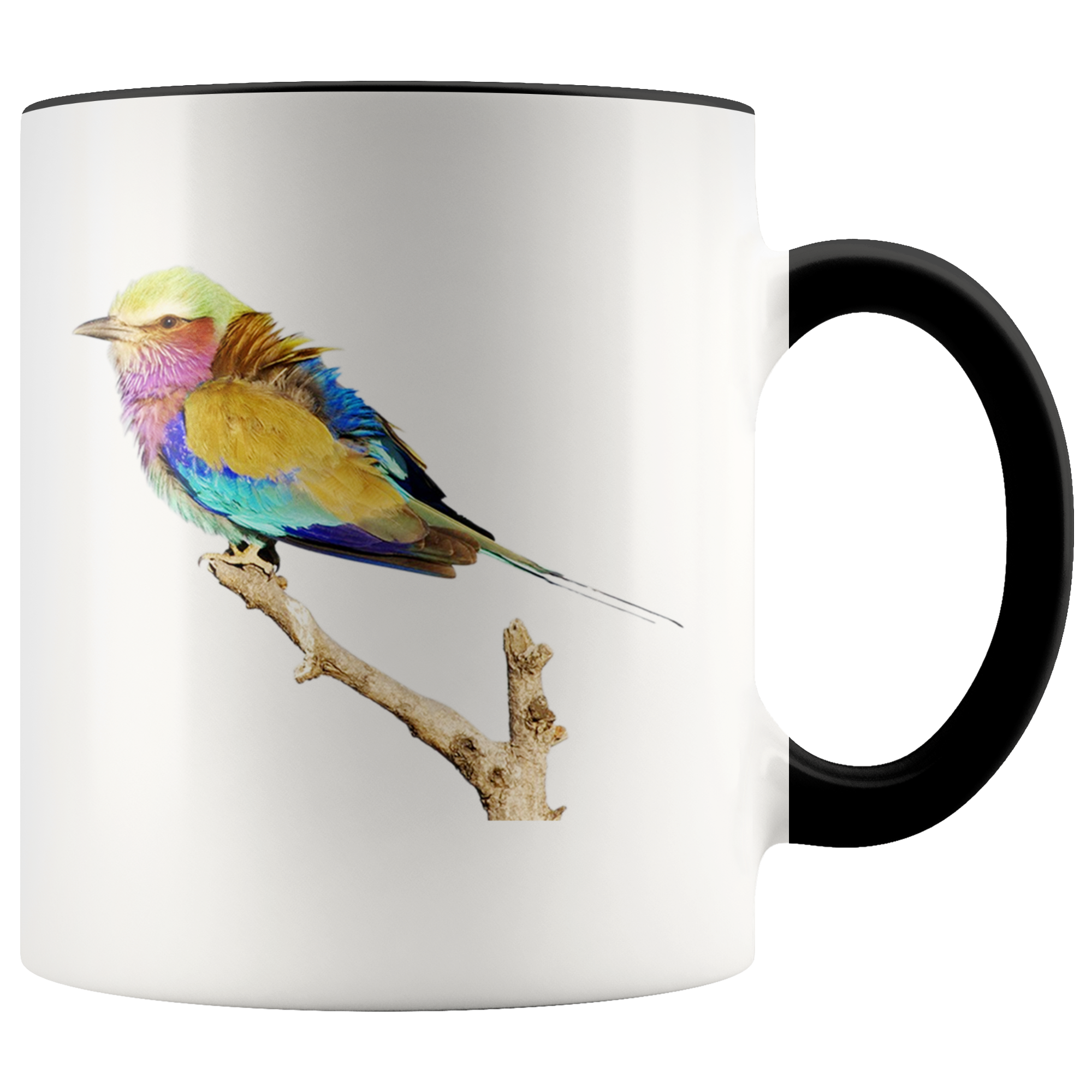 Lilac-breasted Roller Accent Mug