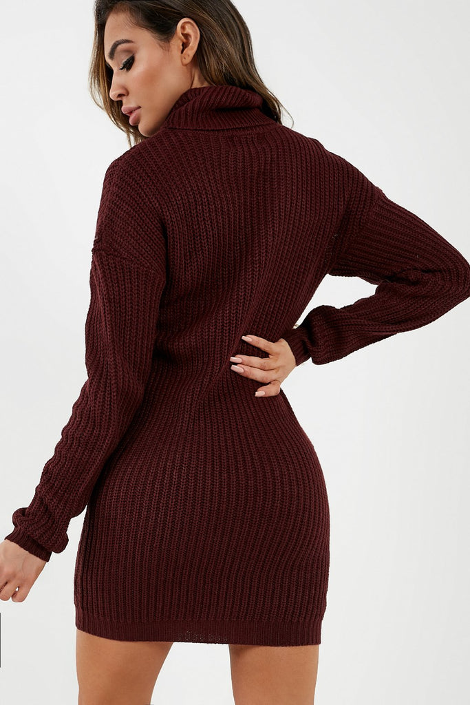 Gianna Wine Roll Neck Knit Jumper Dress (2032923541570)