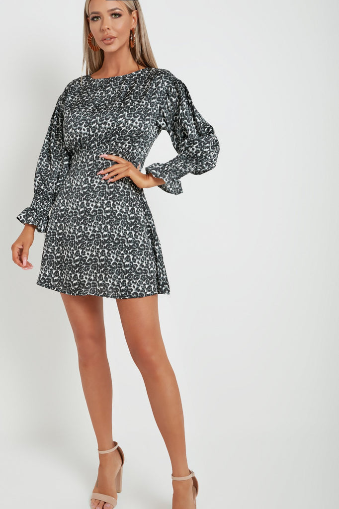 Milo Leopard Print Gathered Skater Dress