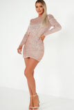 Saoirse Rose Gold Sequin Ruched Long Sleeve Mini Dress