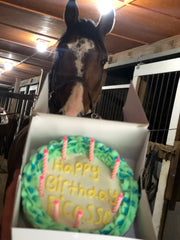 Special order cakes (horses)