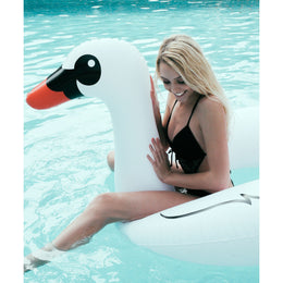 Swan Pool Float View 2
