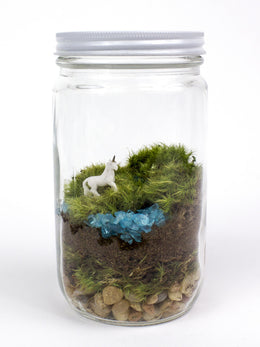 Unicorn Terrarium View 2