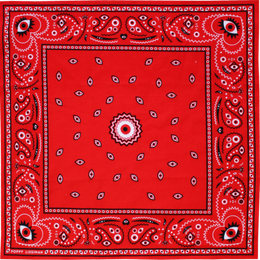 Eye Heart Bandana View 2