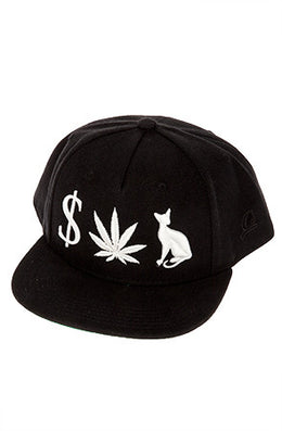 Money Weed P**** Cat Snapback View 2