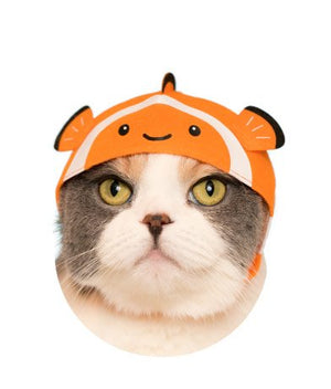 Kitan Club Aquarium Cat Cap Blind Box Series