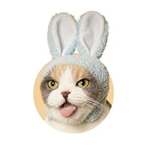 Kitan Club Rabbit Cat Cap Blind Box Series