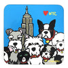 Marc Tetro NYC Group Coaster
