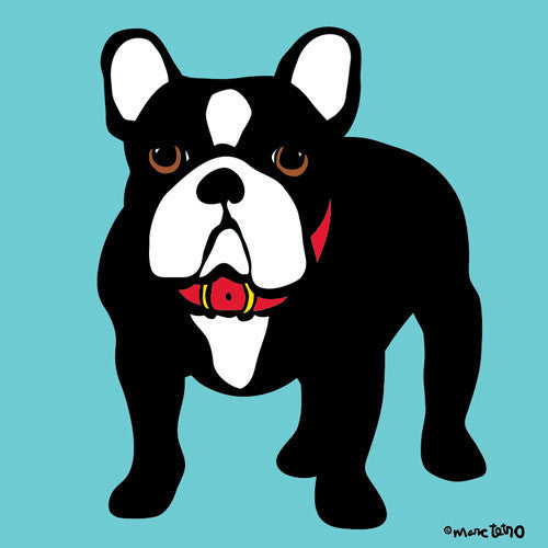 Marc Tetro French Bulldog  by Marc Tetro