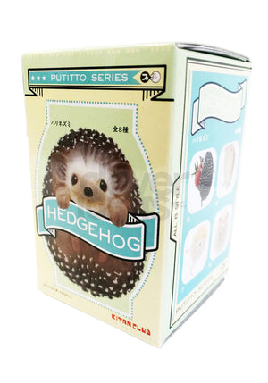 Hedgehog Blind Box Series 1