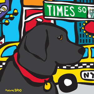 Marc Tetro NYC Black Lab in Times SQ - PIQ