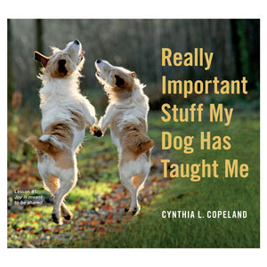 Really Important Stuff My Dog Taught Me Book  by Workman Publishing