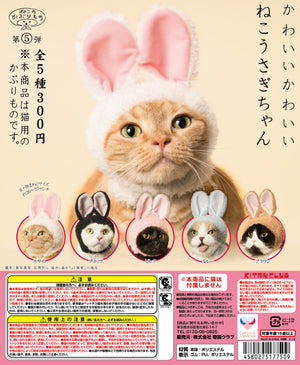 Kitan Club Rabbit Cat Cap Blind Box Series - PIQ