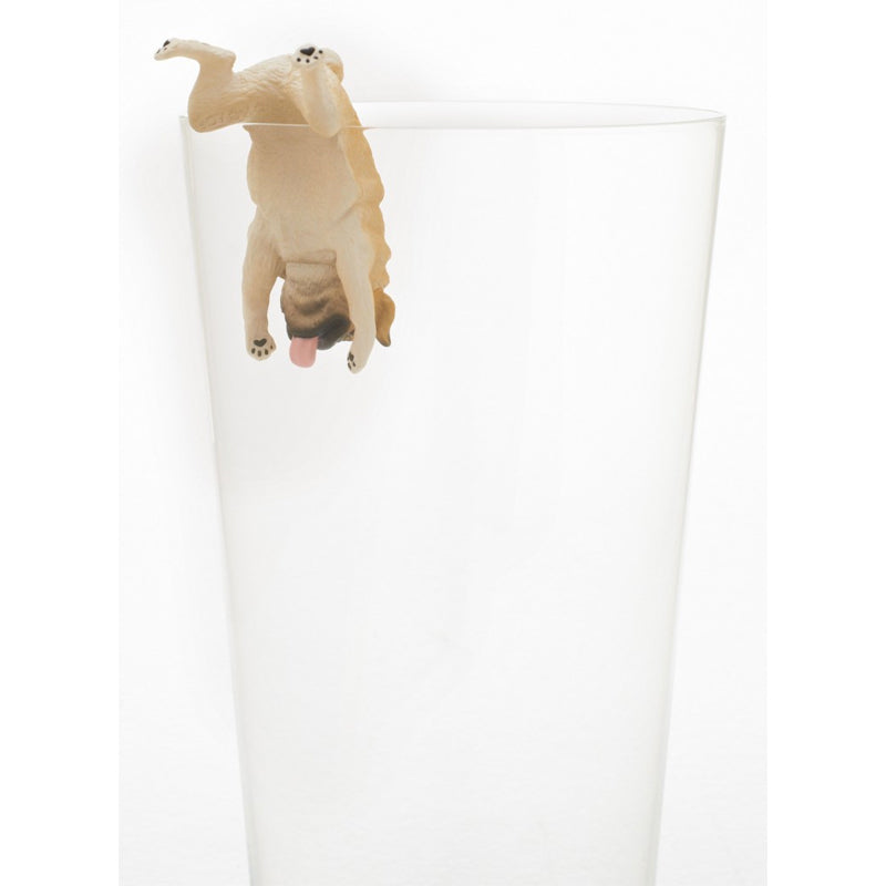 Putitto Pug on the Cup Blind Box Series