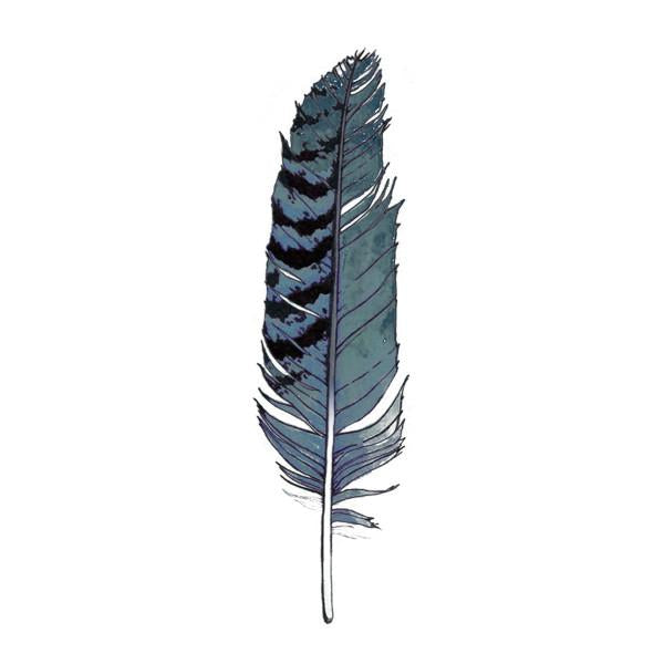 Tattly Blue Jay Feather Temporary Tattoos