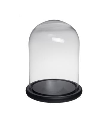 Glass Domes with Wooden Base in 4 sizes