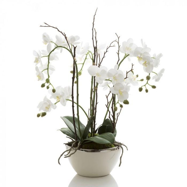 Real Touch Orchid - white / silver rim Pot