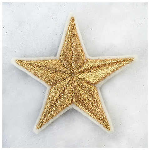 Embroidered Metallic Star