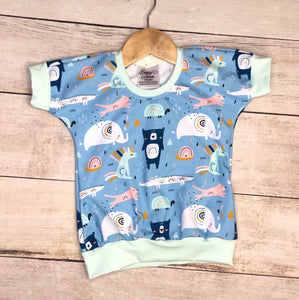 2T Rainbow Animals Sugar Pie Top