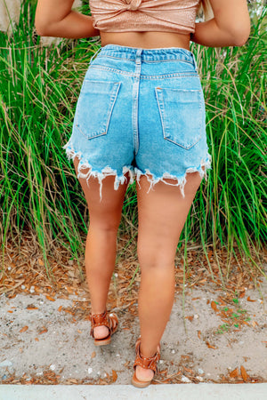 Pennsylvania Avenue Shorts: Denim
