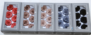 6 pieces Half dozen preserved roses 5 - 6 CM for DIY use Create your own everlasting design