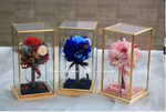 Everlasting preserved flowers tree ball style perfect for presents or home decor