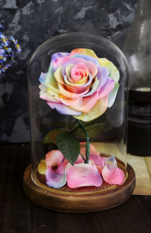 Single Steam Various Colors LED Light Rose Perfect as A Gift