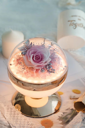 The Pearl Rose Night Light