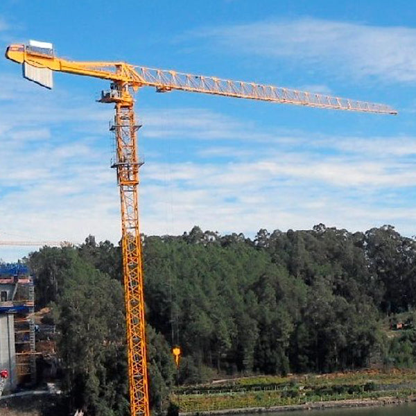 POTAIN MDT 319 TOPLESS CRANE