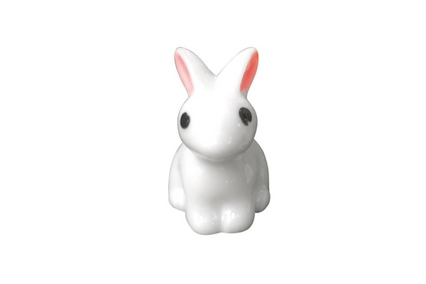 Cute Little White Bunny | Pop Roc Parties