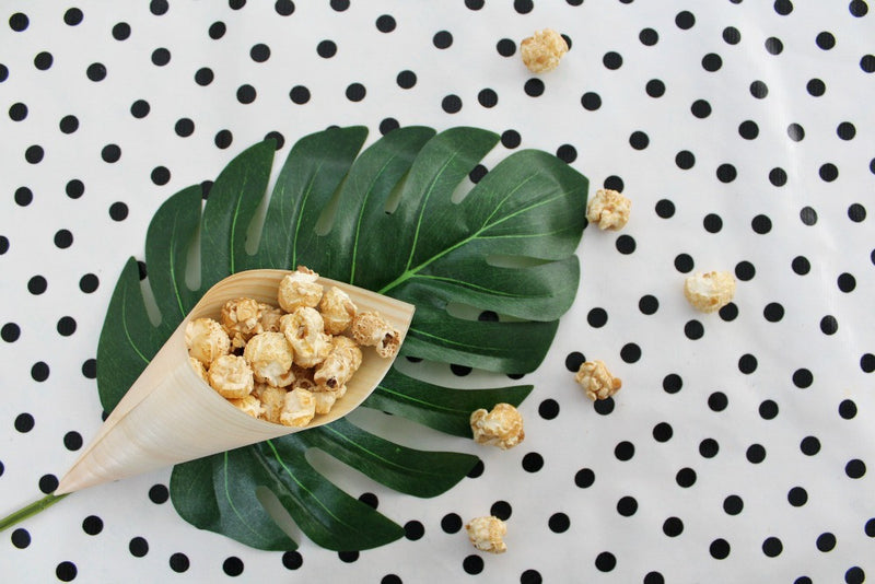 Eco Chic Cones Large | Pop Roc Parties