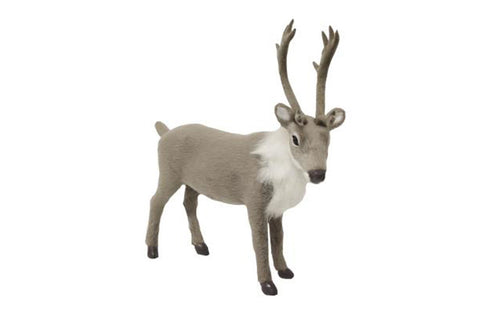 Grey Dasher Reindeer