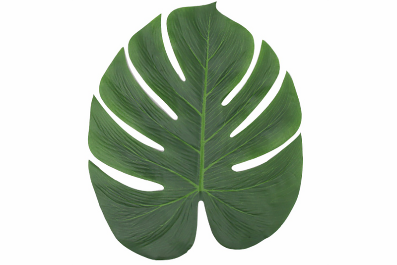 Monstera Leaf Placemat | Pop Roc Parties