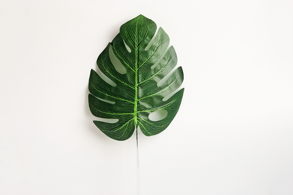 Monstera Leaf | Pop Roc Parties