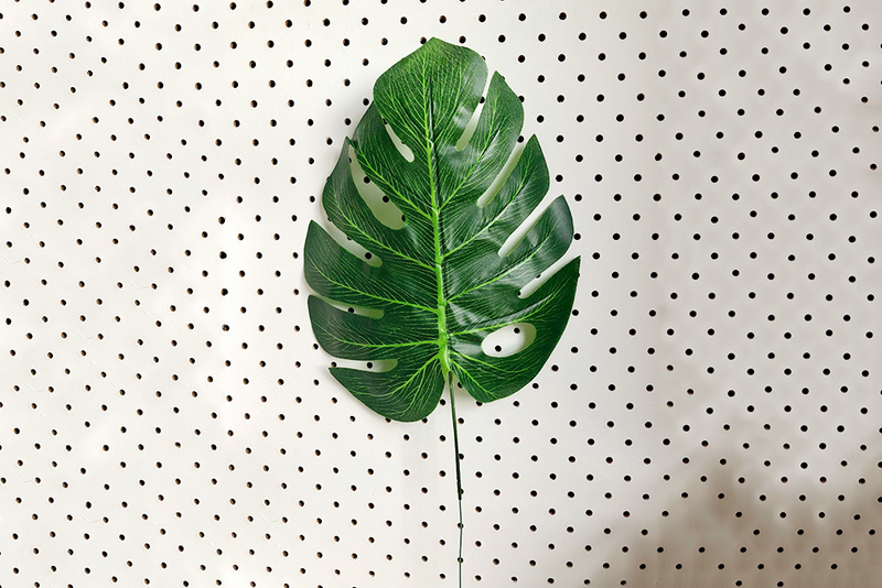 Pop Roc Parties | Monstera Leaf