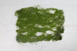 Moss Mats - Pop Roc Parties