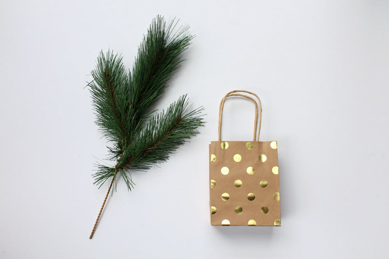 Kraft Gold Foil Polka Dot Gift Bags | Pop Roc Parties