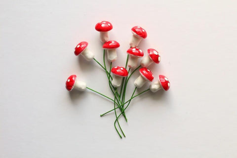 Red Toadstool Bunch