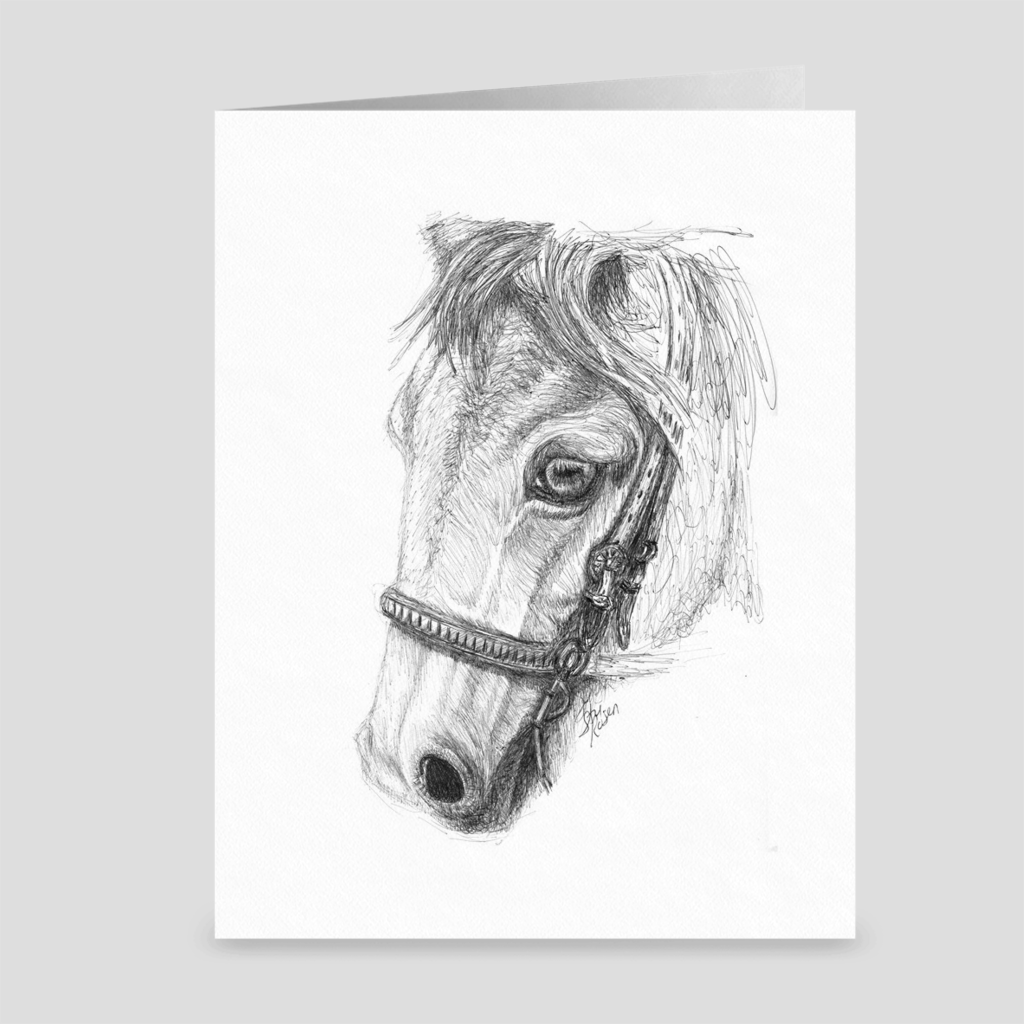 "Horse ""Gaze"" - Greeting Card"
