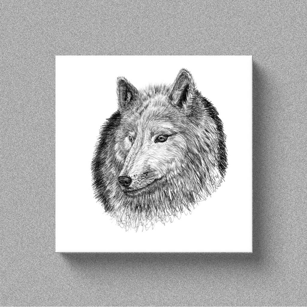 "Wolf ""Aware"" - Canvas"