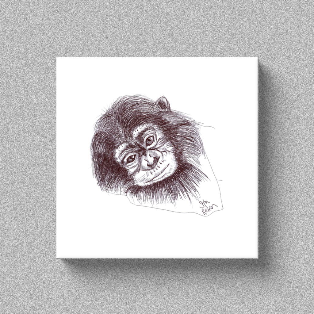 "Chimp ""Gonna Stay"" - Canvas"