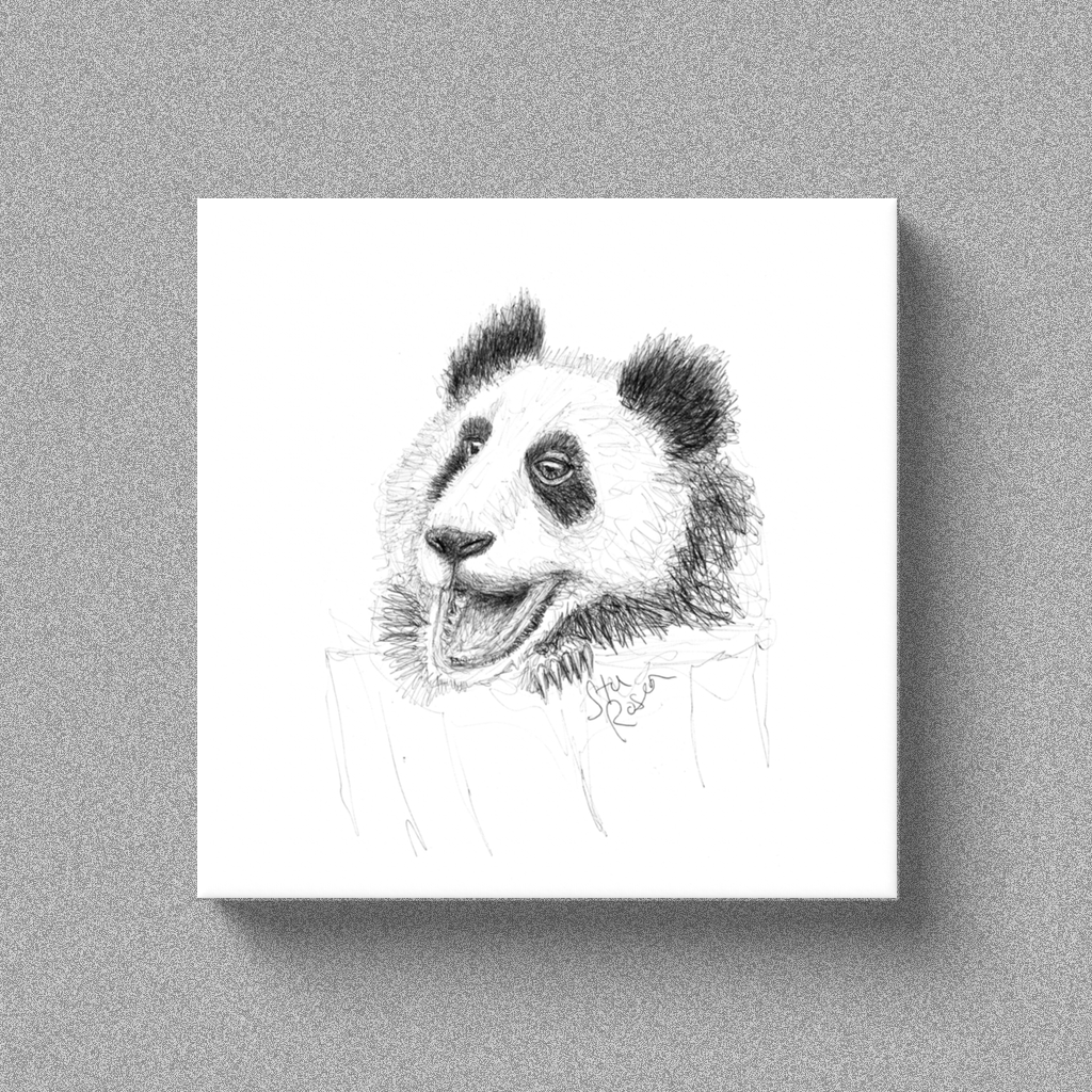 "Panda ""Anticipation"" - Canvas"