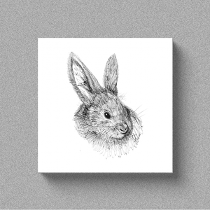 "Rabbit ""Hunny Buns"" - Canvas"