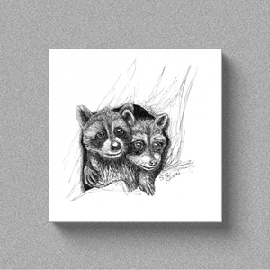"Raccoon ""Bros"" - Canvas"